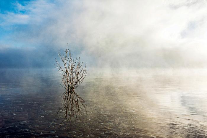 © Tim Pearce