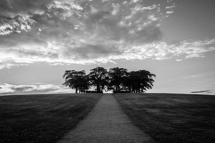 © Tom Wilkinson