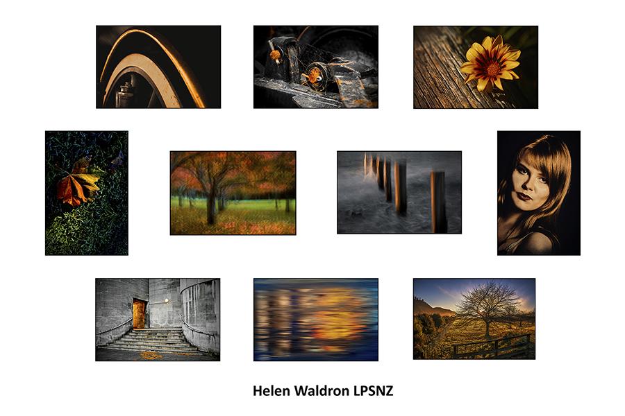 Helen Waldron LPSNZ
